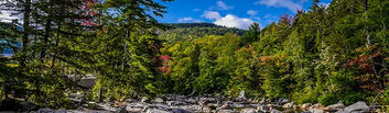 Wilderness river